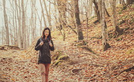 Hiker woman walking in autumn forest Stock Photography
