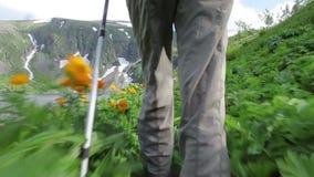 Hiker woman is walking mountain, stock video footage