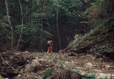 Hiker woman walking in summer forest Royalty Free Stock Image