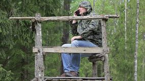 Hiker in the woods with cell phone stock footage