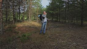 Hiker in the woods looks for an exit. In summer day stock video footage