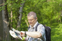 Hiker in the woods. On trails staring at the clock Stock Photography