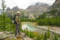 Hiker in Yoho national parc. British Columbia, Canada Stock Images