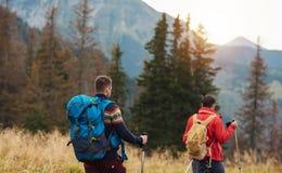 2 hikers вне trekking в горах Стоковое фото RF
