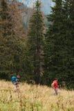 2 hikers вне trekking в лесе Стоковое Изображение