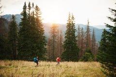 Hikers вне trekking совместно в лесе Стоковое Изображение RF