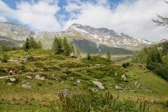 Hikers в Альпах, Австрия Стоковое Фото