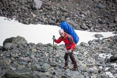 Hikers в горах Altai Стоковые Изображения
