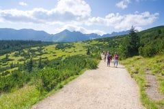 Hikers в горах Tatra Стоковые Изображения