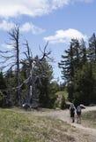 2 Hikers вдоль оправы озера кратер Стоковое Изображение RF