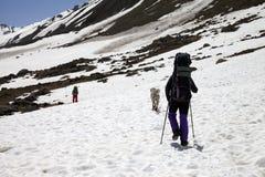 2 hikers и собаки в снежных горах на весне Стоковое фото RF