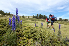 2 hikers и цветка Стоковые Фото