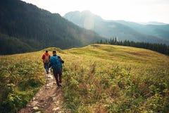 2 hikers идя вниз с следа в глуши Стоковое Фото