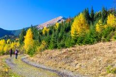 2 Hikers идя на тропу в осеннем лесе Стоковое Изображение RF
