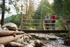Hikers наслаждаясь взглядом от моста в лесе Стоковые Изображения RF
