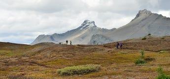 Hikers на высокогорном следе в канадских скалистых горах вдоль бульвара Icefields между Banff и яшмой Стоковые Фотографии RF