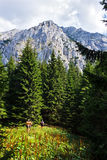 Hikers на горах принца каменных Стоковое Фото