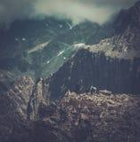 Hikers на горе Стоковое фото RF