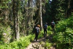 Hikers на горной тропе Стоковое фото RF