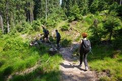 Hikers на горной тропе Стоковая Фотография RF