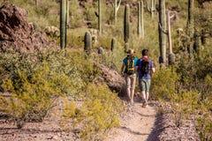 2 Hikers на изрезанном следе Стоковые Фотографии RF