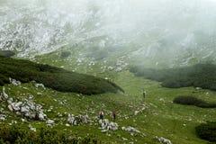 Hikers на их пути вверх Стоковое Изображение