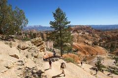 Hikers на пробе сада ферзей на национальном парке каньона Bryce в Юте Стоковое Фото