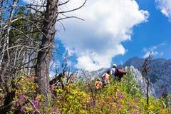 Hikers на румынских горах Стоковые Изображения