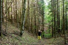 Hikers на следе в древесине Стоковое Фото