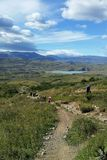 Hikers на следе в национальном парке Torres del Paine, Патагонии, Чили Стоковая Фотография RF