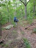 Hikers на следе в укладывать рюкзак природы Стоковая Фотография