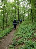 Hikers на следе в укладывать рюкзак природы Стоковая Фотография RF
