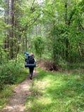 Hikers на следе в укладывать рюкзак природы Стоковое Изображение