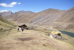 Hikers на следе в высоких Андах, Стоковое фото RF