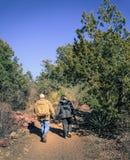 Hikers на следе Стоковое Изображение