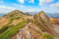 Hikers на следе Стоковое фото RF