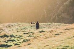 Hikers подпирают домой на настроении весны мероприятий на свежем воздухе захода солнца - desaturated изображении стиля Стоковые Фото