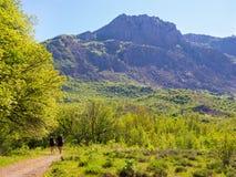 Hikers собирают trekking в Крыме Стоковые Фото