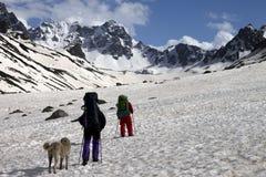 2 hikers с горами собаки весной снежными Стоковое фото RF