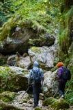 Hikers с рюкзаками в каньоне Стоковые Изображения RF