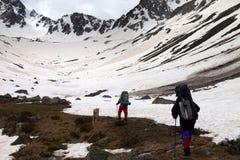 2 hikers с собакой на горе снега весны в утре Стоковое фото RF