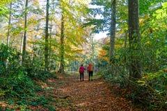 hikers foto de archivo