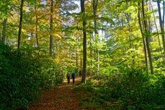 hikers fotos de archivo