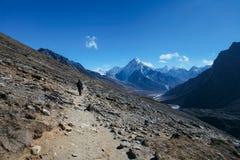 hikers Foto de Stock