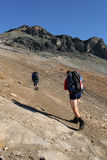 Hikers. In the mountains with heavy backpacks royalty free stock images