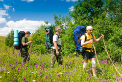 Hikers. Group of people hikes in  Crimea mountains Royalty Free Stock Photos