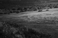 Hikers in action in Auvergne landscape Royalty Free Stock Photo