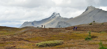 Hikers on the alpine trail in the Canadian Rockies along the Icefields Parkway between Banff and Jasper Royalty Free Stock Photos