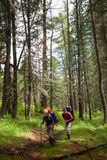 Hikers in Altai mountains Royalty Free Stock Photo