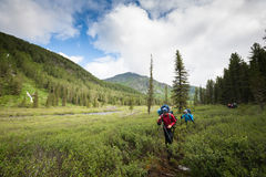 Hikers in Altai mountains Royalty Free Stock Photos